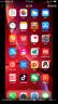 Apple iPhone XR (A2108) 128GB 紅色 移動聯通電信4G手機 雙卡雙待 實拍圖