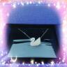 SWAROVSKI 施華洛世奇 時尚大號漸變天鵝項鏈 女友禮物 5215034 實拍圖