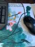 新盟鼠標墊個性創意卡通超可愛小號防滑動漫lol加厚女生游戲筆記本電腦大辦公桌墊電競粗面 水墨荷花(260mm*210mm*3mm) 實拍圖