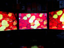 NB F160 電腦顯示器支架 拼接雙屏 桌面伸縮旋轉升降支架 免打孔多屏支架 氣彈簧人體工學掛架 17-27英寸 實拍圖