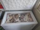 海爾(Haier) 202升家用冰柜 冷藏冷凍轉換柜 冷柜 節能單溫冰箱 BC/BD-202HT 實拍圖
