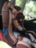 貝貝卡西 兒童汽車安全座椅 國家3C、歐洲ECE認證 0-6歲 LB718咖色松果 實拍圖