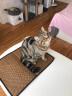 華元寵具(hoopet)狗狗涼席泰迪寵物墊子夏季降溫冰墊寵物散熱墊S 實拍圖