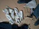雙星春夏季田徑鞋帆布鞋運動鞋男鞋女鞋晨練鞋訓練鞋加大號大碼648 白色 41 實拍圖