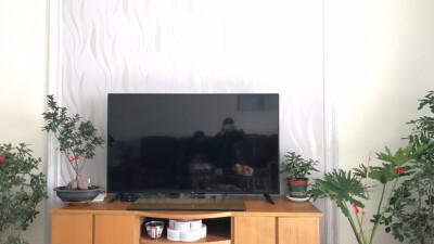 43英寸 小米电视E43A用户评价晒图