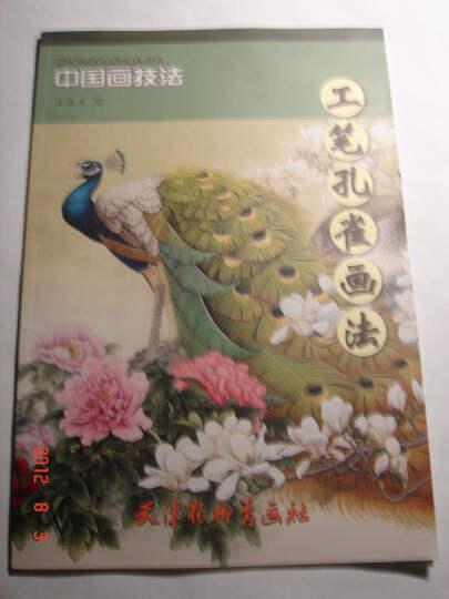 中国画技法 工笔孔雀画法 国画玉兰和孔雀画法-徐湛国画孔雀 国画孔雀图片