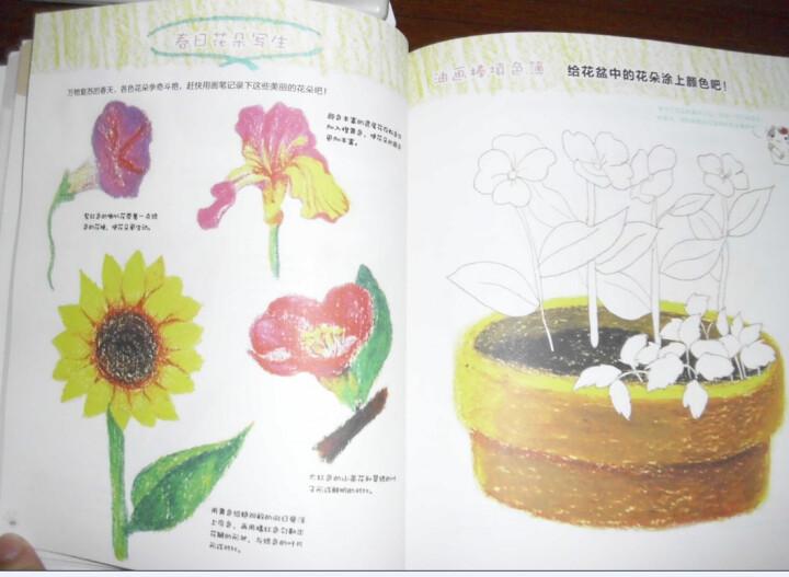 飞乐鸟的手绘时光:油画棒基础入门 晒单图