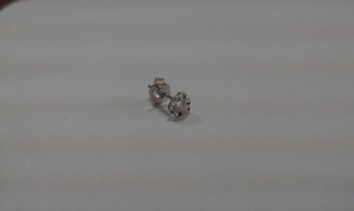 蓝色多瑙河 白18K金10分钻石耳钉 恋恋物语 时尚花形 晒单图