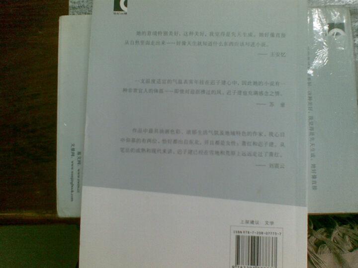 迟子建中篇小说集2:秧歌 晒单图