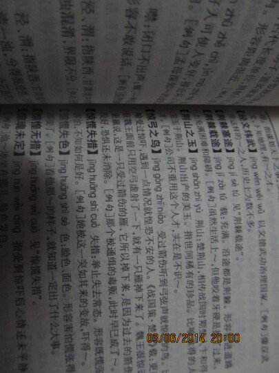 常用成语词典(简明本) 晒单图