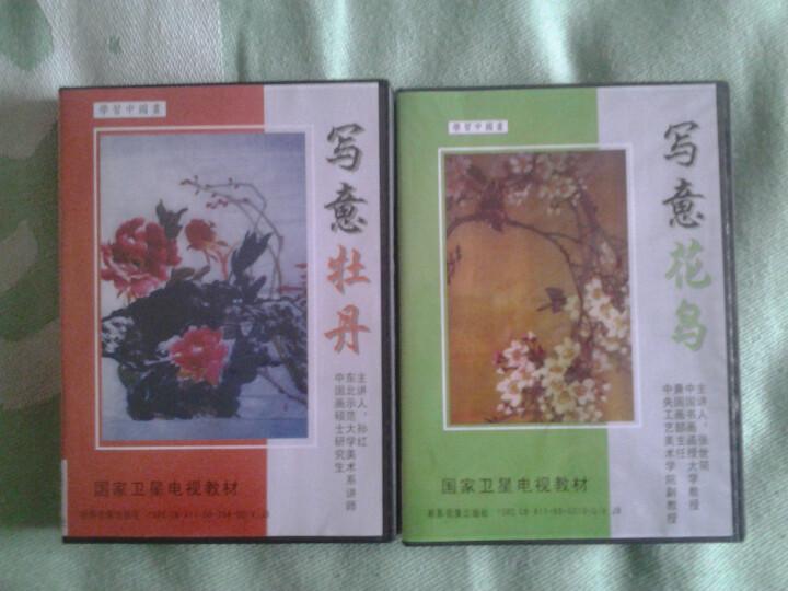学习中国画:写意花鸟(3DVD) 晒单图