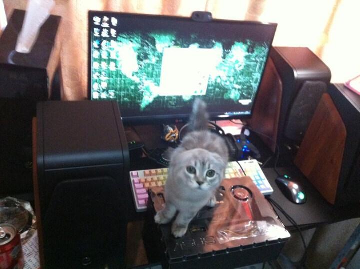 SANWA SUPPLY 电脑桌 员工桌 办公桌 学生写字台会议桌  简约光感1米2 DESK039 黑色 晒单图