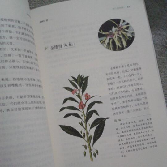 种子的信仰 晒单图