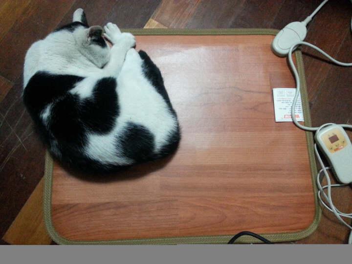 问暖碳晶移动地暖垫取暖器 韩国便携电热地毯 办公室移动暖脚垫 电热垫电地暖 高温速热电热板60*50 LG332 晒单图