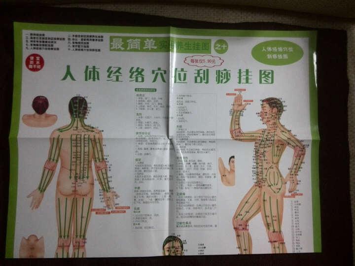 最简单实用养生挂图之9:人体经络穴位按摩挂图 晒单图