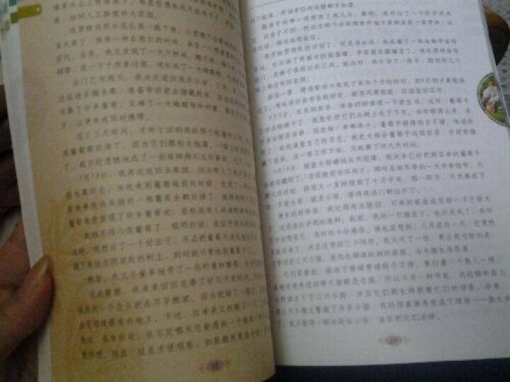 最畅销中外名著名家导读本:鲁滨逊漂流记(全彩青少版) 晒单图