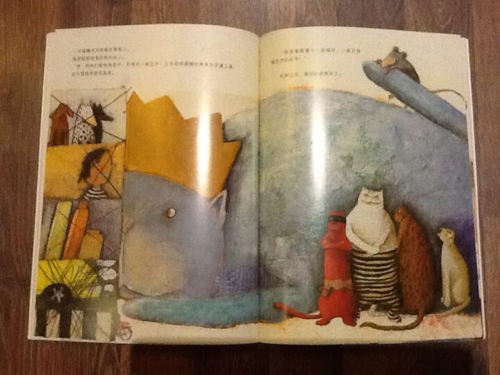 海豚绘本花园:寻找国王的皇冠 晒单图
