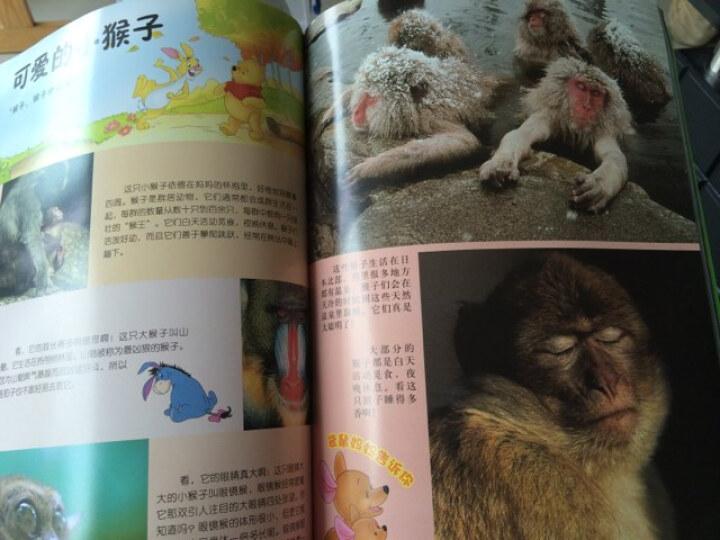 小熊维尼·新版我的第1套百科全书·动物卷(上册) 晒单图