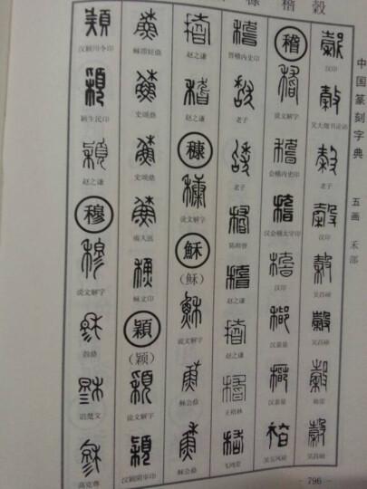 中国篆刻字典(第2版)(套装上下册) 晒单图