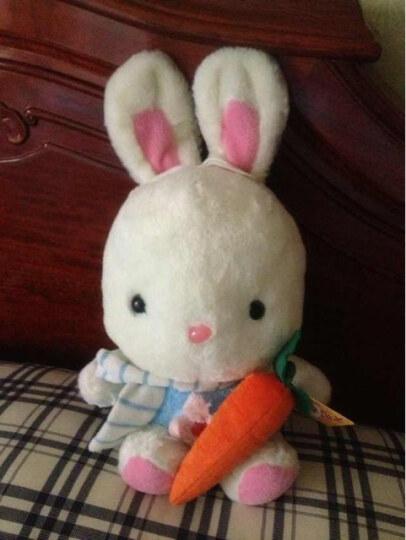 PetPro 狗玩具 毛绒玩具 发声玩具 响声玩具 胡萝卜 晒单图