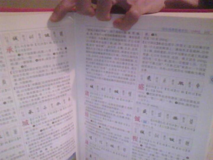 新华大字典(彩色版·大字本)(最新修订版) 晒单图