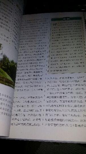 白话精编二十四史(第3卷):三国志·晋书(彩图版) 晒单图