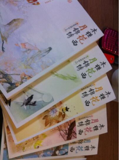 木槿花西月锦绣3月影花移约重来 晒单图