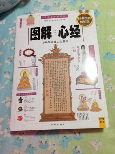 图解心经:260字说破人生真相(2012白话全译图解版) 晒单图