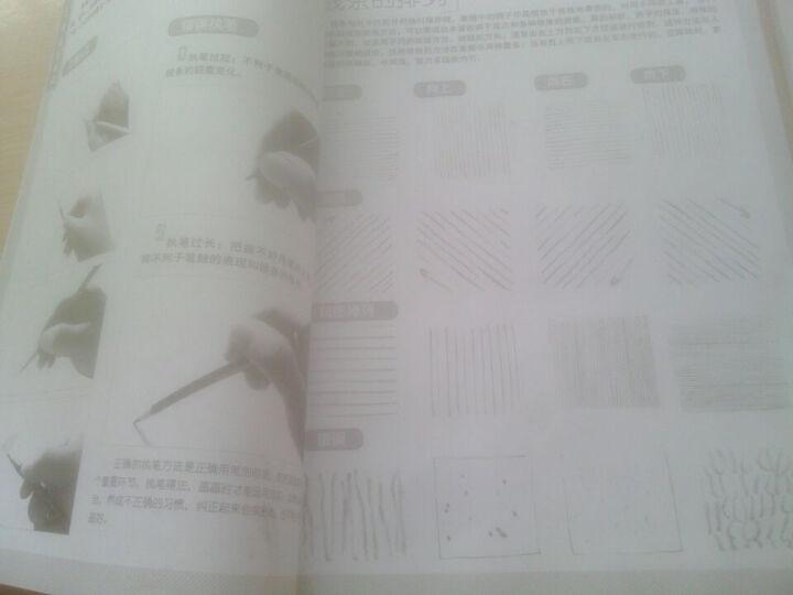 15天学会素描:肖像篇 晒单图