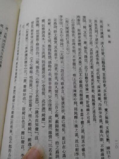 中国古典文学理论批评专著选辑:文赋集释 晒单图