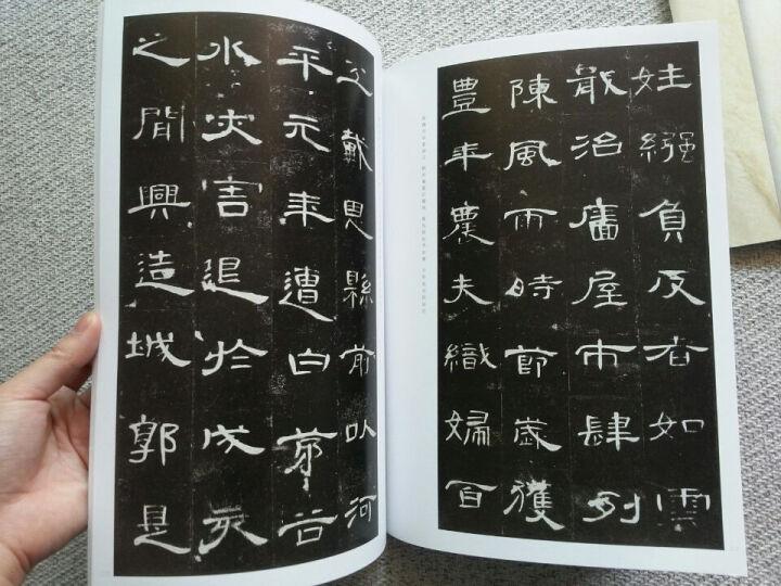 中国历代经典碑帖辑选:颜真卿多宝塔碑 晒单图