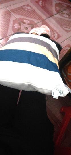 飞天 帆布办公室靠枕头 沙发抱枕套含芯 床头汽车载护腰靠背垫 定制抱枕 酷炫灰 55*55cm(抱枕套+芯) 晒单图