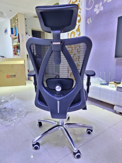 西昊(SIHOO) 人体工学电脑椅子 家用老板椅电竞椅 靠背转椅座椅 护腰办公椅可躺 M18灰色 晒单图
