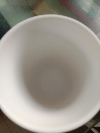 莲泽 陶瓷咖啡杯子 陶瓷/马克杯 情侣水杯 创意咖啡杯碟套装 办公搪瓷水杯带盖带勺子 亚光绿配木盖瓷勺 晒单图