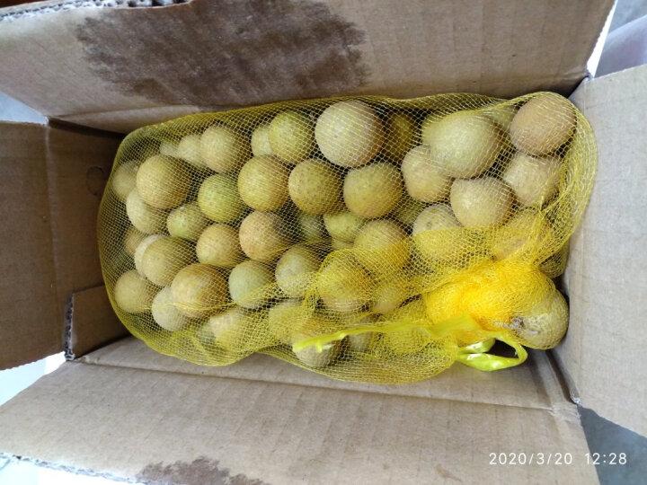 【顺丰第二件减10元】美果汇 泰国进口去枝龙眼1kg 新鲜水果 桂圆 晒单图