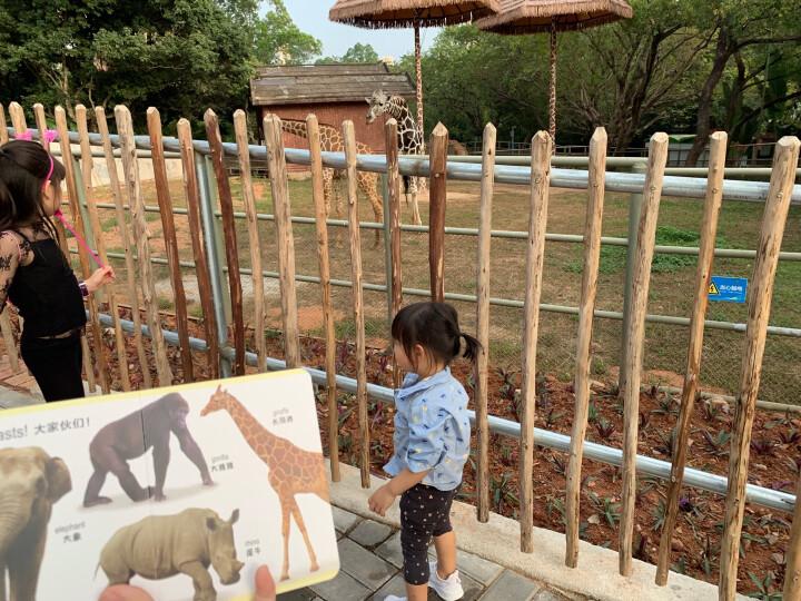 DK幼儿认知双语小百科(0-3岁,附赠中英双语音频套装共6册) 晒单图