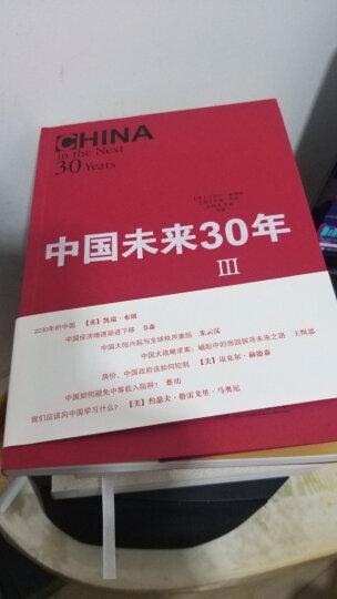 中国未来三十年3:重塑梦想与现实之维 晒单图