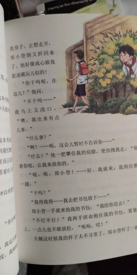 莱茵石的手镯 四年级上册 人教版语文素养读本 小升初阅读拓展 温儒敏编 北大语文教育研究所 小学 晒单图