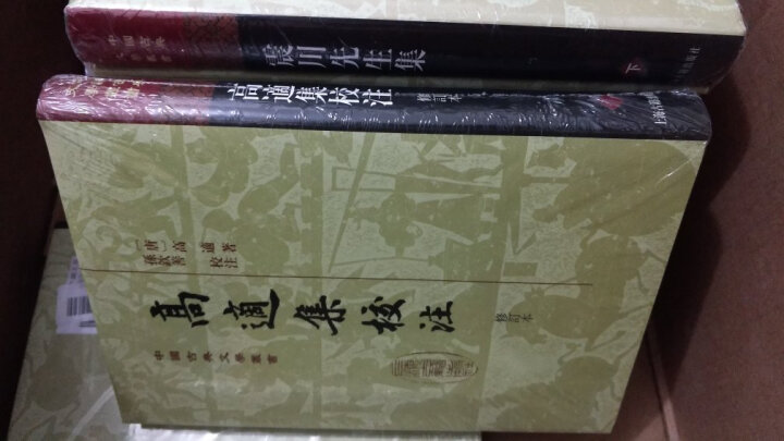 玉台新咏汇校(繁体竖排版)(平装上下册)(中国古典文学丛书) 晒单图