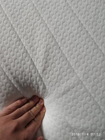 南极人(NanJiren)床垫床褥 四季皆宜防滑多针榻榻米火烈鸟垫子海绵软垫褥子 晒单图