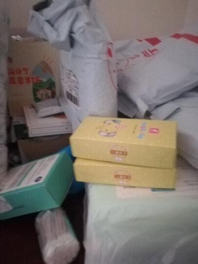 象宝宝(elepbaby)婴儿袜子6双盒装夏季薄款透气吸汗儿童网眼袜子新生儿宝宝袜子1-3岁女孩组 晒单图