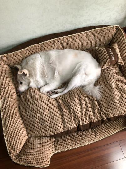 华元宠具(hoopet) 金毛狗窝可拆洗春夏宠物窝萨摩耶大型犬狗床宠物用品XL 晒单图