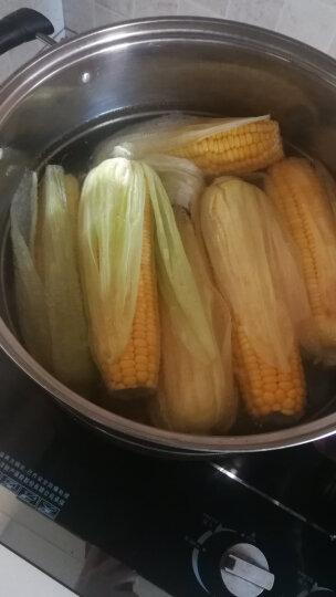 绿鲜知 甜玉米 水果玉米 包谷 包米 约1kg  火锅食材 新鲜蔬菜 晒单图