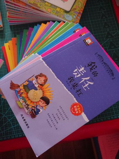 12册大迷宫书 儿童迷宫大冒险益智书 幼儿走迷宫书3-6岁专注力训练书逻辑思维训练智力开发书籍 晒单图