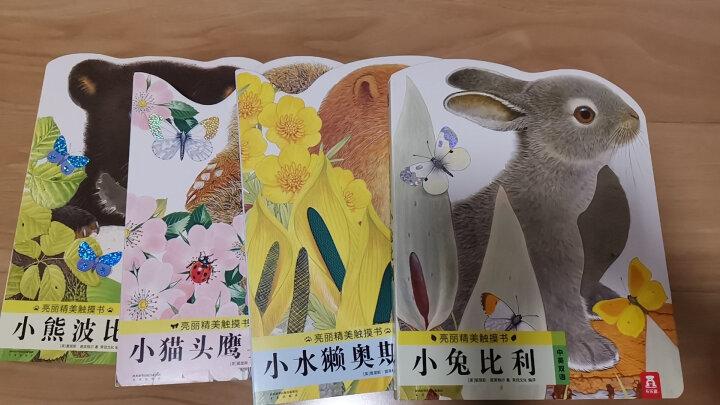 亮丽精美触摸书系列(中英双语新版 套装共4册) 晒单图