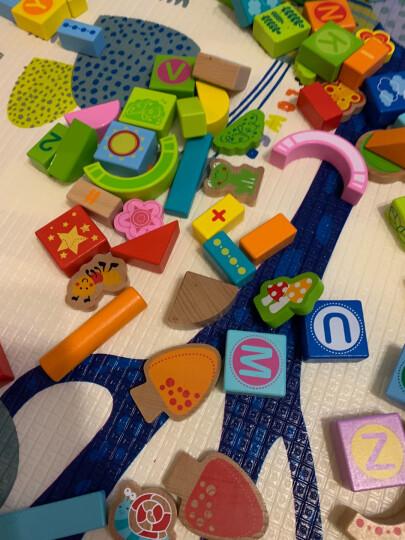 德国(Hape)儿童玩具宝宝拼搭早教启蒙益智玩具120粒果蔬积木玩具桶装男孩女孩生日礼物 1岁+ E8303 晒单图