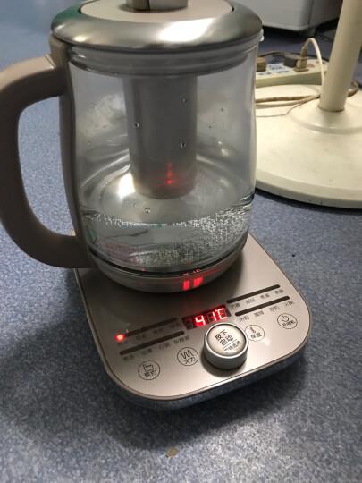 小熊(Bear)养生壶煮茶壶煮茶器电水壶热水壶烧水壶电热水壶玻璃黑茶YSH-A18R1带滤网1.8L 晒单图