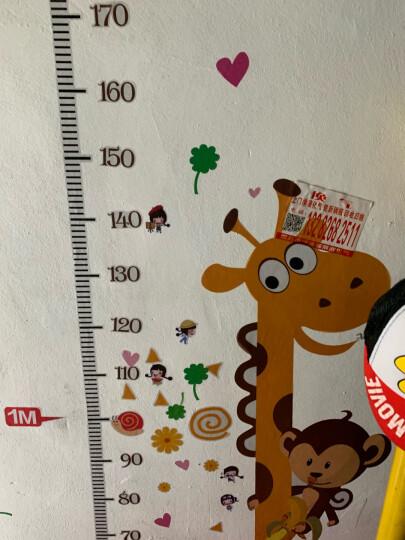 【3件7折】儿童房身高尺墙贴宝宝卧室墙壁贴纸卡通动物身高墙贴画测量身高墙纸 十二星座艺术 大 晒单图