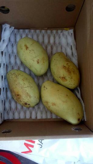 原泽味 四川攀枝花大凯特芒果 1.5kg 新鲜水果 单果500g以上 晒单图