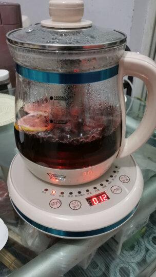小浣熊养生壶 煮茶壶中药壶电热烧水壶煮茶器养生杯熬药养身茶壶 卡其色标准款(1.5L) 晒单图